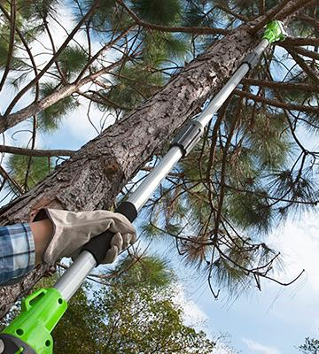 Review of GreenWorks 20672 Li-Ion Cordless Pole Saw