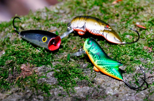 Best Trout Lures