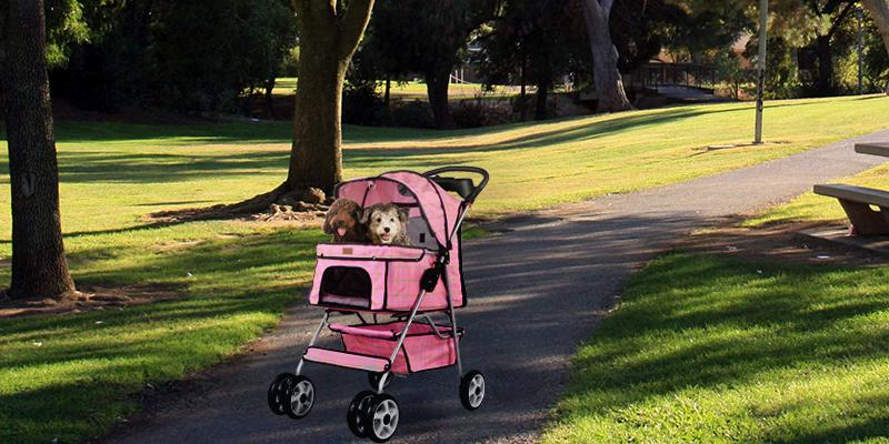 Review of BestPet 4 Wheels Pet Dog Cat Stroller w/RainCover
