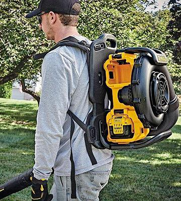 Review of DEWALT DCBL590X1 Noise-Restricted