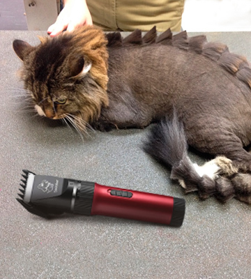 Review of Sminiker Cordless Low Noise Cat and Dog Clippers