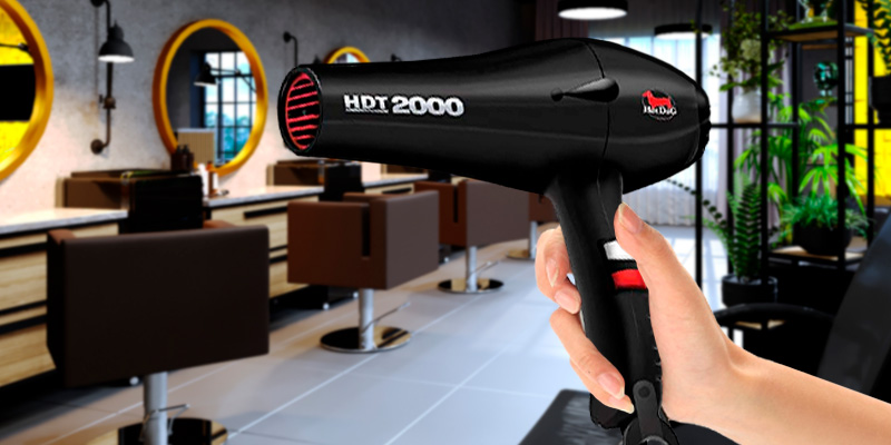 Review of HotDog HDT-2000 Professional Hair Dryer Most Powerful