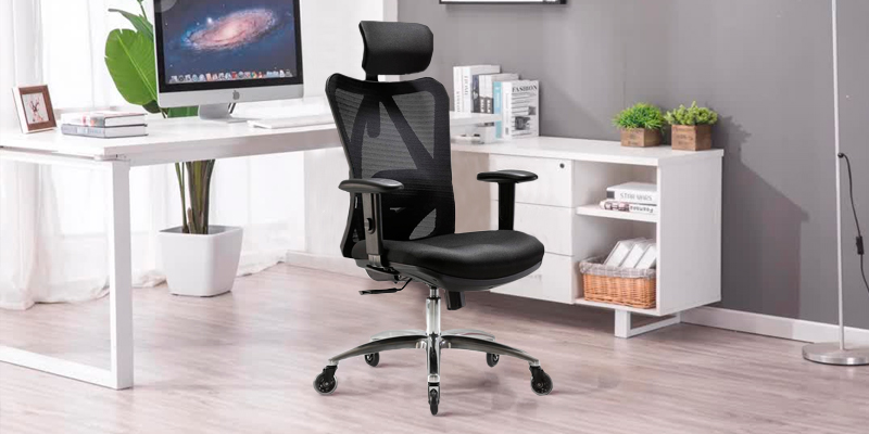 Review of XUER Ergonomic Mesh Computer Desk Chair for Home and Office
