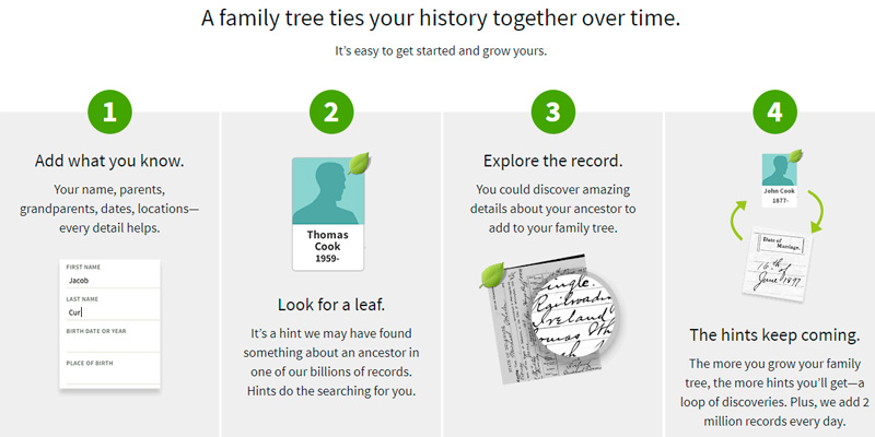 Review of Ancestry Family Tree