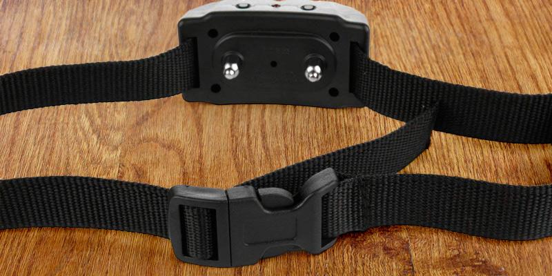 Petiner Dog Bark Control Collar in the use