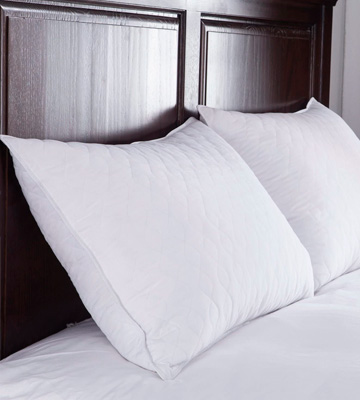 Review of puredown Quilted Set of 2 Goose Feather and Down Pillow