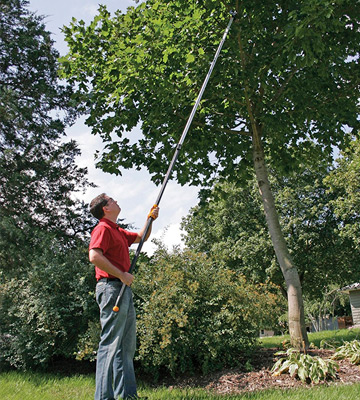 Review of Fiskars Extendable Tree Pruning Stik Pruner