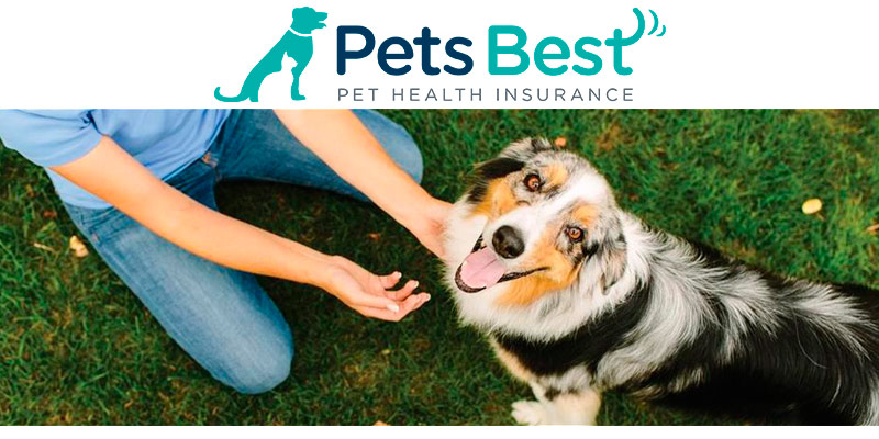 Detailed review of Pets Best Pet Insurance for Dogs and Cats