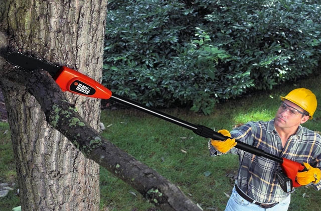 Best Pole Chainsaws for Easy Tree Pruning