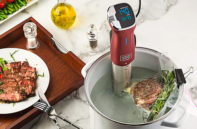 Best Sous Vide Machines