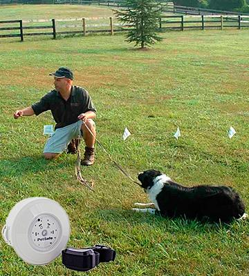 Review of PetSafe In-Ground Rechargeable Pet Fencing System