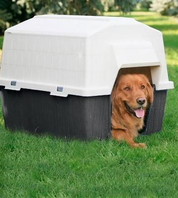 Review of Petmate 290710 Barn Home III for Small Pets
