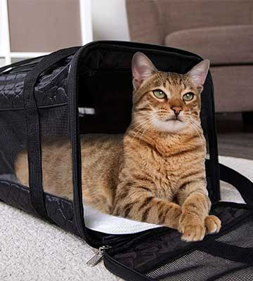 Review of Sherpa Travel Original Deluxe Pet Carrier