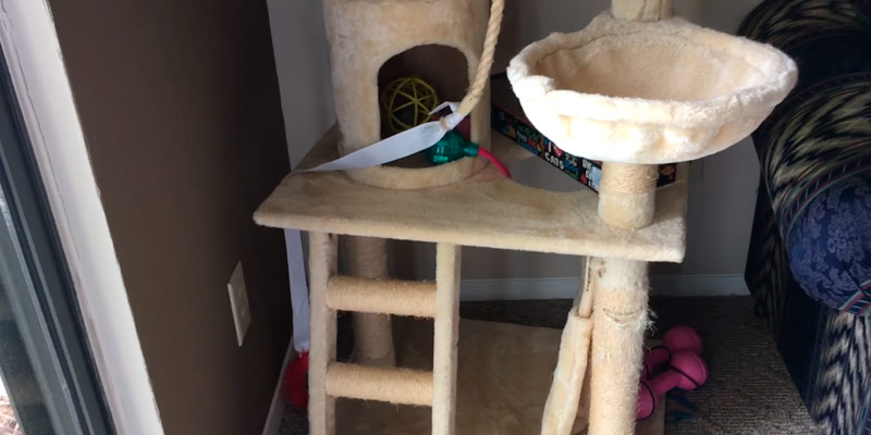 Detailed review of Go Pet Club Cat Tree Furniture