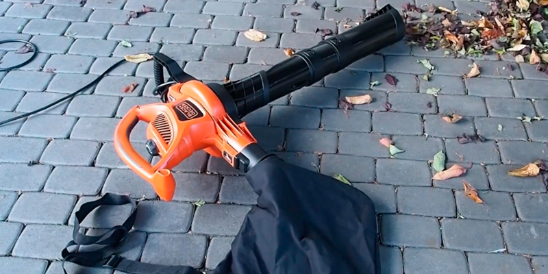 BLACK+DECKER BV5600 High Performance Vac in the use
